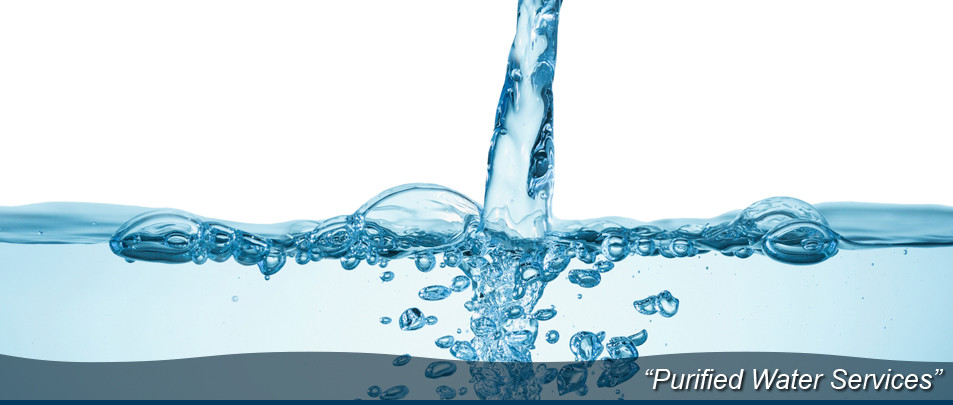 Purified-Water